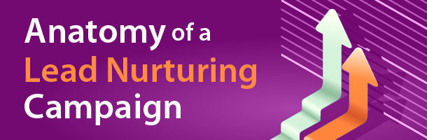 anatomy of a lead nurturing campaign